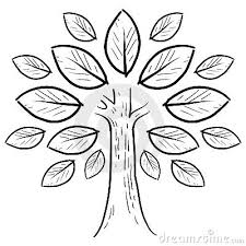 abstract tree sketch by lhfgraphics via dreamstime designs