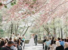 cherry blossom wedding wedding with cherry blossoms elizabeth designs the
