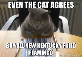 Buy All The Food Meme - even the cat agrees buy all new kentucky fried flamingo hungry