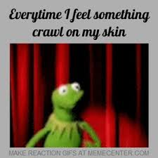 Crawling In My Skin Meme - everytime i feel something crawl on my skin by nickybro meme center