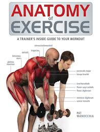 anatomy of exercise a trainer u0027s inside guide to your workout pat