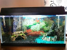 fish tank decoration themes awesome house tropical fish tank