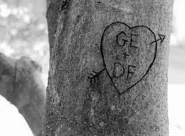 initials carved in tree initials carved in a tree wedding tips and inspiration