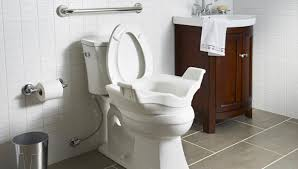 Lowes Comfort Height Toilet Install A Grab Bar