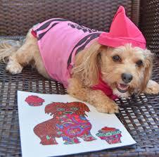 crayons halloween costume crayon yourdesignerdog