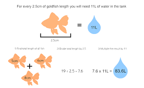 How To Care For Your by How To Care For Goldfish My Pet Warehouse
