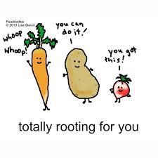 best 25 vegetarian jokes ideas on veggie jokes