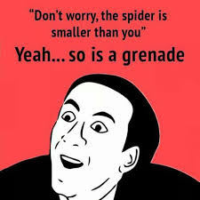 Afraid Of Spiders Meme - when people say not to be afraid of spiders you don t say know