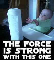 The Force Is Strong With This One Meme - the force is strong with this one funny pinterest star funny