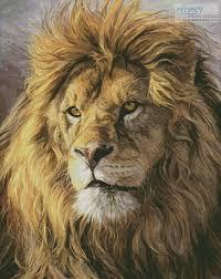 artecy cross stitch portrait lion cross stitch pattern