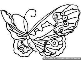 dessin de papillon blog title