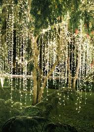 wedding decorations luxury outdoor tree decorations for weddings