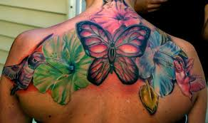 hummingbirds hibiscus flowers and a butterfly up this