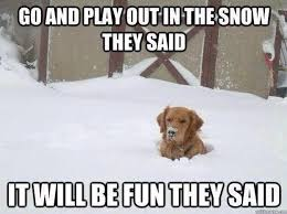 Funny Snow Memes - 21 blizzard memes to keep you laughing through winter storm jonas