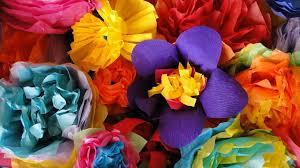 san antonio flowers vibes medals are abundant all san antonio