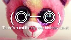 there u0027s a cat licking your birthday cake