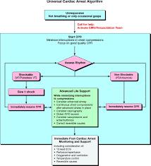 part 1 executive summary circulation