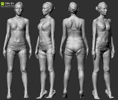 Female Anatomy Reference 55 Best Reference Scan Images On Pinterest Anatomy Reference