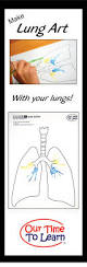 23 best respiratory system lungs images on pinterest lungs