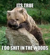 Confession Bear Meme - the real confession bear