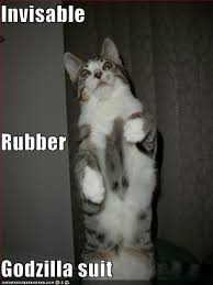 Cat Suit Meme - invisable rubber godzilla suit i can has cheezburger funny cats