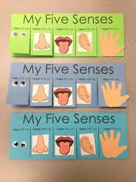 five senses craft flip book visit www