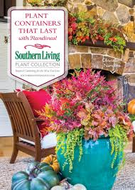 plant containers that last with southern living plant collection