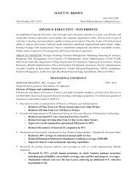 Director Of It Resume Executive Director Resume Free Resume Example And Writing Download