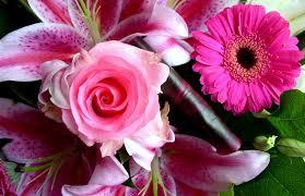 Beautiful Flowers Beautiful And Exotic Flowers Diy Springtime Bouquets U0026 Fruit