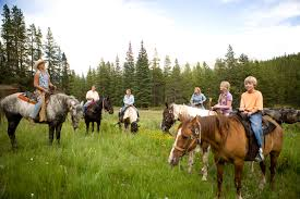 50 things to do in breck this summer blog breckenridge com