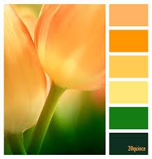 color palette color palettes pinterest color inspiration