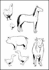 farm animal printables that actually look like the real animal