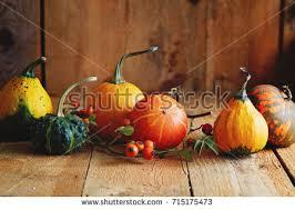 various types pumpkin on wooden table stock photo 715175767