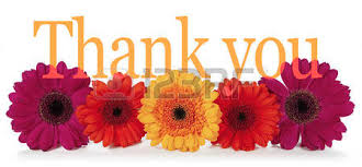 thank you flowers stock photos royalty free business images