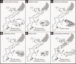 Map Of Okinawa Sciency Thoughts The Enigmatic Pleistocene Amphibians Of Okinawa