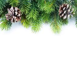 how to repurpose christmas greenery garden club