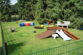 Dog Playground Equipment Backyard by 17 Best Images About Canil E Gatil On Pinterest Cat Houses