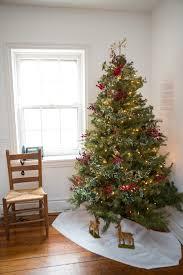 trees of historic bethlehem historic bethlehem museums u0026 sites