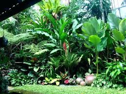 how to design a tropical garden tropicl ldscpg orles tropical