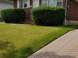 302 pacific ave staten island ny 10312 realestate com