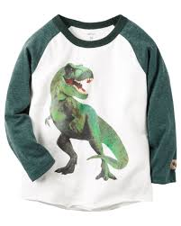 long sleeve dinosaur raglan graphic tee babies toddler boys and