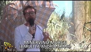 pinuccio pinucciosono twitter
