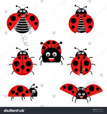 cartoon ladybug vector set isolated background stock vector