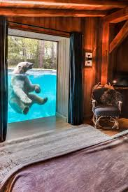 stuffwedroolabout sleep with polar bears in a french zoo cool