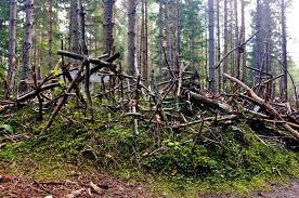 hill of crosses estonia