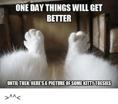 It Gets Better Meme - one day things will get better until then heresapicture ofsome