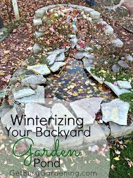 winterizing your backyard garden pond