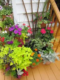 plantscaping a deck or patio container gardening gardens and patios