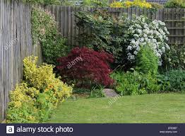 england dorset garden flowers attractive corner of a country