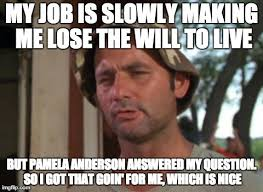 Pamela Meme - it s really been a day of ups and downs imgflip